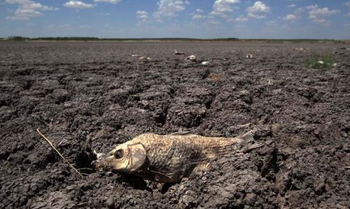 APTOPIX Texas Drought