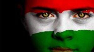 Hungary flag boy Picnik