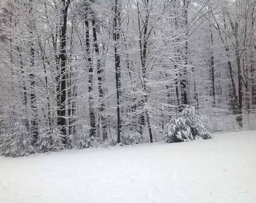 december-snow